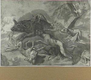 Honden die een everzwijn aanvallen