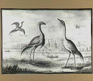Heuvellandschap met Kraanvogels bij een rivier