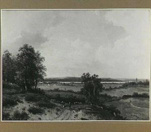 Landschap met een landweg en in de verte een meer