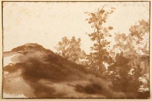 Heuveltje en bomen bij Den Haag