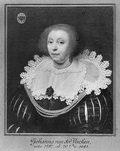 Portret van een vrouw, genaamd Johanna van der Veecken (1587-1641)