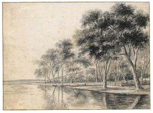 Bomen aan de oever van een rivier