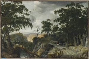 Berglandschap met valkenjagers op een weg langs een waterval