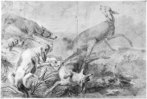 Honden jagen op een hert