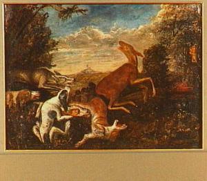Hert aangevallen door honden