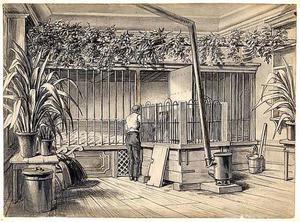 Interieur van het verblijf waar het pasgeboren nijlpaardje Herman was ondergebracht