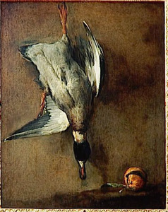 Dode eend bevestigd aan een muur