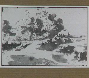 Duinen tussen Den Haag en Wassenaar bij het landgoed Clingendael
