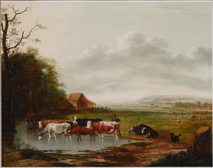 Weids landschap met koeien bij een drenkplaats