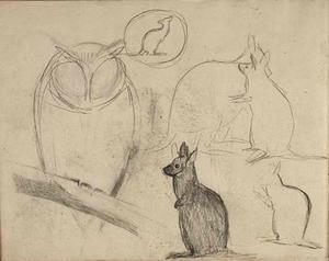 Schetsboekblad met schetsen van kangoeroe's en een uil