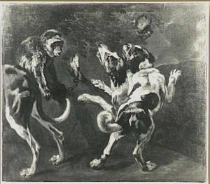 Studie van honden en aap