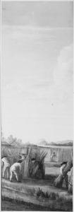 De hennepteelt; Het oogsten van hennep