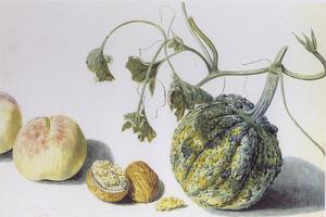 Perziken, walnoot en kalebas