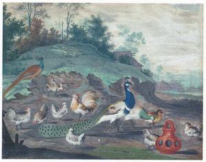Pluimvee, pauw en fazant in landschap met boerderij