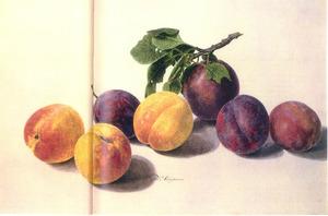 Abrikozen en pruimen