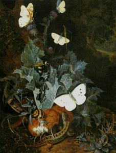 Boslandschap met distel, slang, salamander, vlinders en insecten