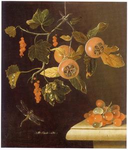 Stilleven met rode aalbessen, mispels, druiven en een libelle