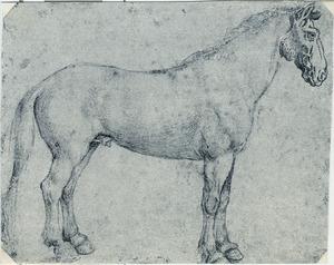 Staand paard naar rechts