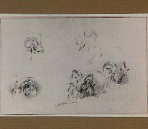 Vijf ramskoppen