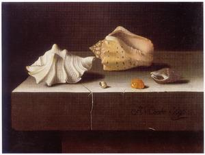 Stilleven met vijf schelpen op een stenen tafel