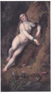 Andromeda aan de rotsen gekluisterd