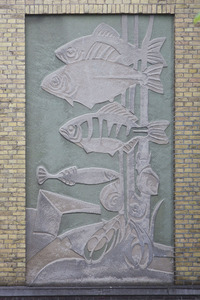 Onderwaterscène met vissen, waterslakken en waterplant
