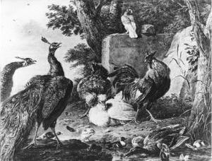 Pauwen, kippen en eenden in een landschap
