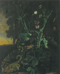 Bosstilleven met distels en vlinders