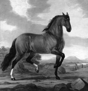 Hispanus, rijpaard van Karl XI