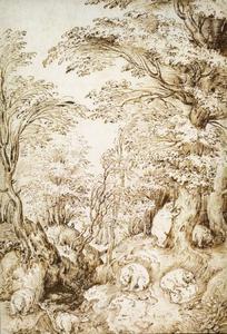 Beren in een bos