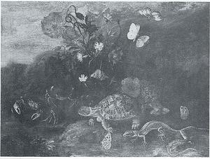Bosstilleven met schildpad en krabben