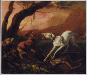 Honden vechten om een dood hert