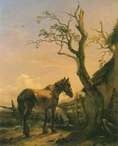 Uitgemergeld paard nabij een vervallen stal en een half dode boom