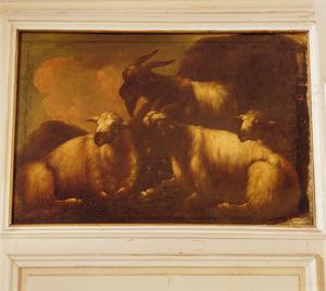Drie liggende schapen en een staande bok