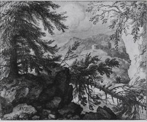 Berglandschap met omgevallen pijnboom