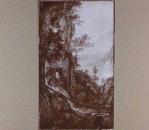 Berglandschap met omgevallen dennenboom