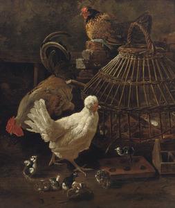 Twee kippen, een haan en kuikens bij een rieten vogelkooi