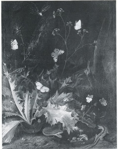 Distel en vlinders
