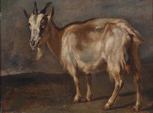 Studie van een geit