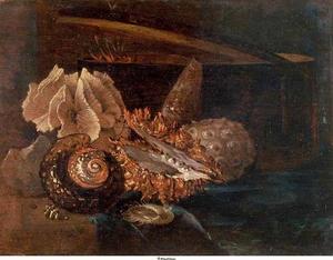 Stilleven met schelpen, koraal en houten spanen doos