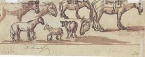 Studie van paarden