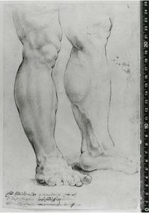 Studie van de Hercules Farnese