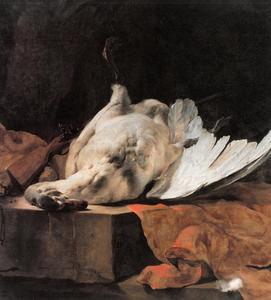 Dode zwaan met rood kleed op een stenen rand