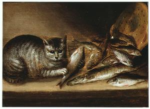 Visstilleven met een cyperse kat