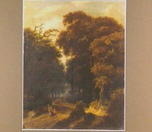 Boslandschap met wandelaars op een zandweg
