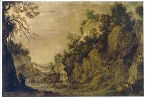 Berglandschap met een ooievaar bij een waterval