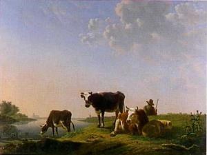 Koeien aan de drinkplaats