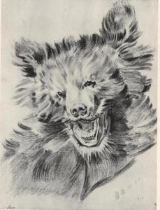 Jacht op wolven en vossen