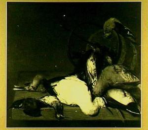 Dood gevogelte