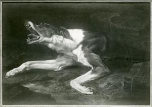 Hond bekneld onder een ingestorte muur